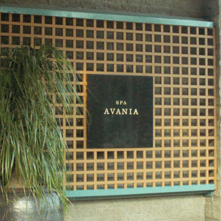 Hyatt Gainey Ranch Space Avania